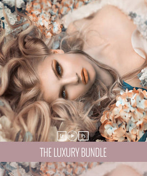 Popular! The Luxury Bundle