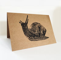 Snail (on brown)