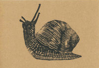 Gail the Snail (on brown)