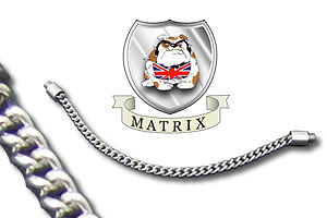 "Matrix Innovations 6"" Stainless Chain"
