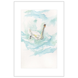 Curious Swan, St. Gilgen, Austria Watercolor Postcards