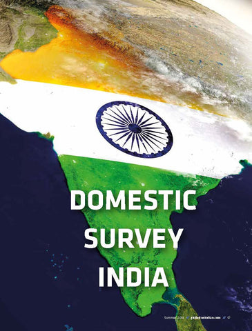 India Domestic Custody Survey