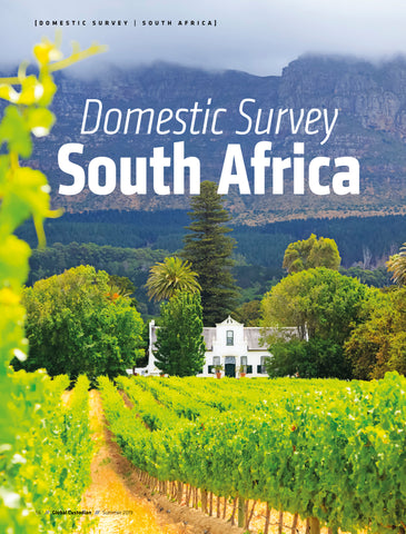 South Africa Domestic Survey