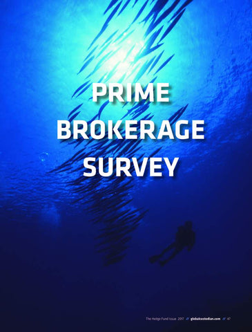 Prime Brokerage Survey