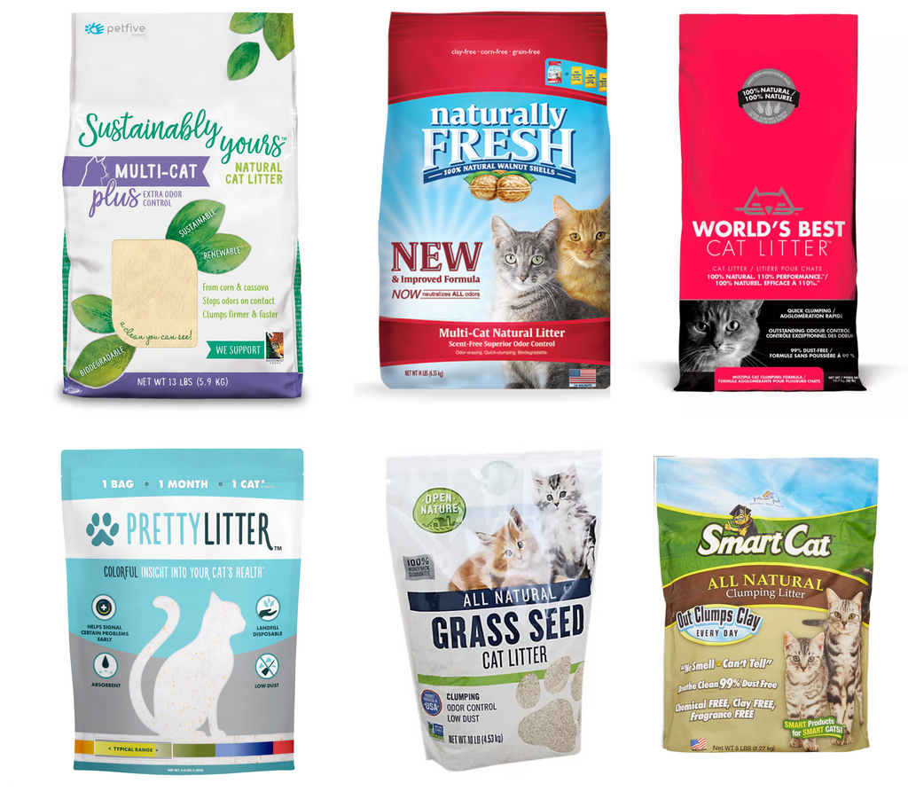 Sustainably yours review World's best cat litter Grass Seed litter out clumps clay odor control Naturally Fresh Walnut