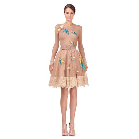 Short tulle dress with embroidery (original price $765.00)