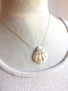 Hawaii Shell Necklace, white shell necklace