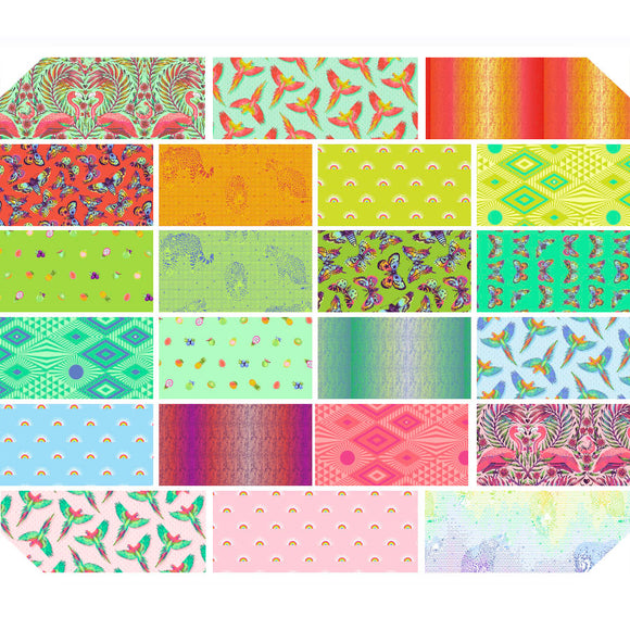 October 50% Deposit/Preorder- 22pc Fat Quarter, Half Yard, and Full Yard Bundles of Daydreamer by Tula Pink for Freespirit Fabrics