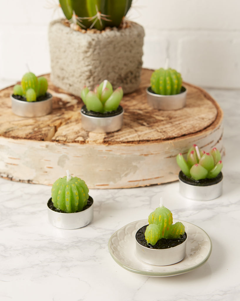 DII Cactus Tea Light Candles (Set of 6)