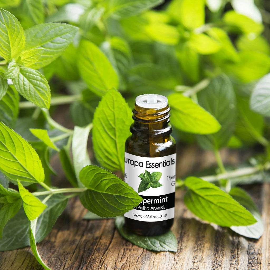 DII Peppermint Essential Oil (10ml)