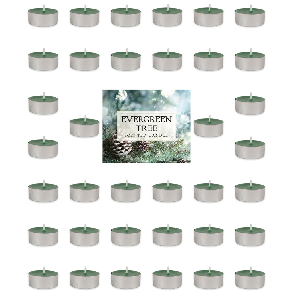 Evergreen Tree Tealights 36 Pc