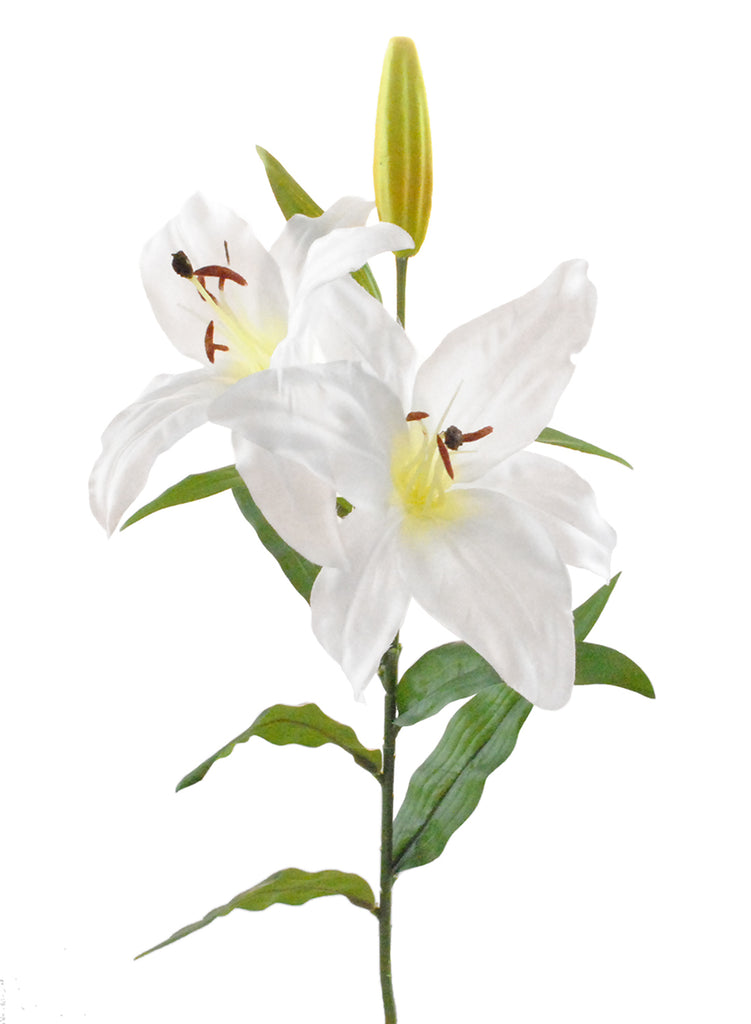 DII Flower Tiger Lily White (Set of 4)