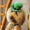 Leprechaun Mutt Hatter Plush Toy