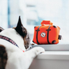 Globetrotter Collection for the Jet-Setting Pup 5-pc Set