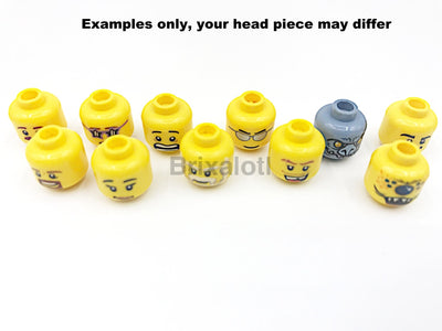 Assorted Minfigure Head Minifigure