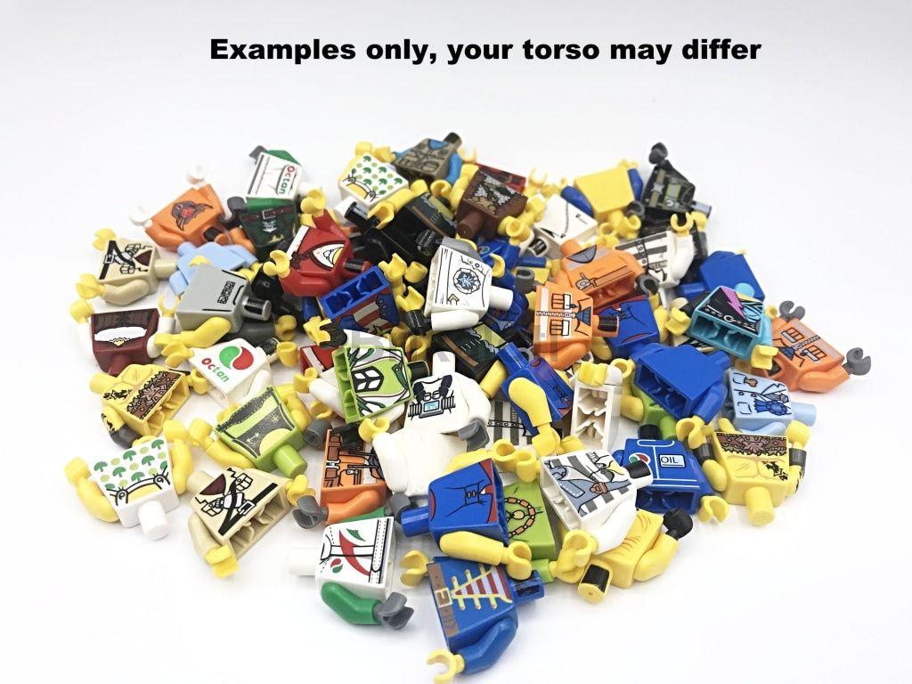 Assorted Minfigure Torso Minifigure