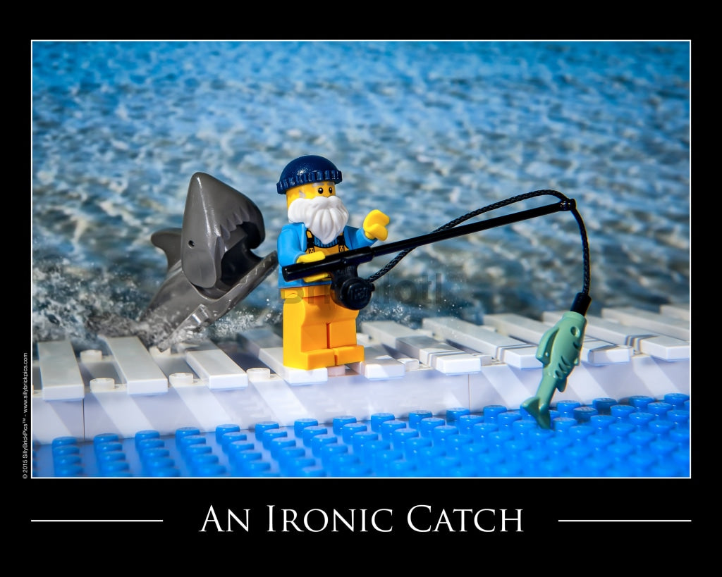 Ironic Catch Toy Photography Art Print 8X10 Art