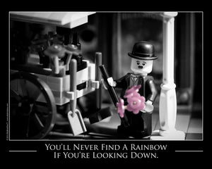 Never Find Rainbows Looking Down Toy Photography Art Print 8X10 Art