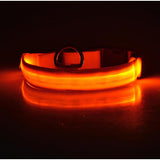 Safety LED Collar
