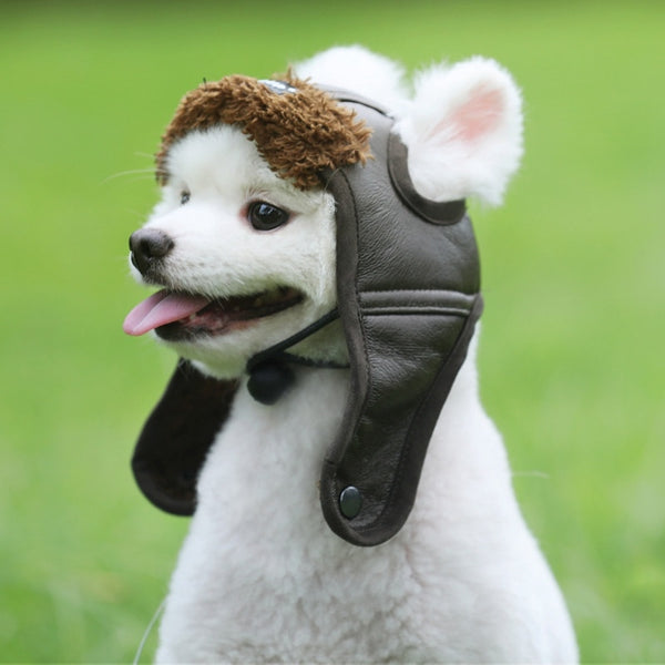 Warm Pet Aviator Hat