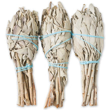 "WANDerlust 9"" White Sage Smudge Stick"