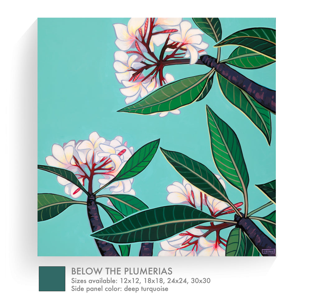 BELOW THE PLUMERIAS