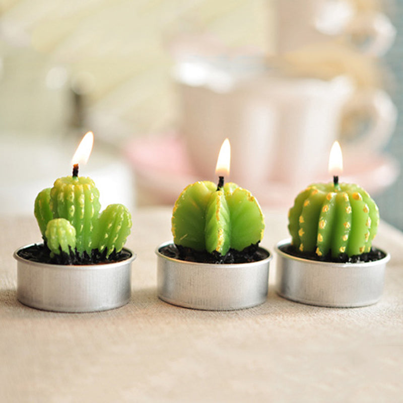 Potted Cactus and Flamingo Scented Candles