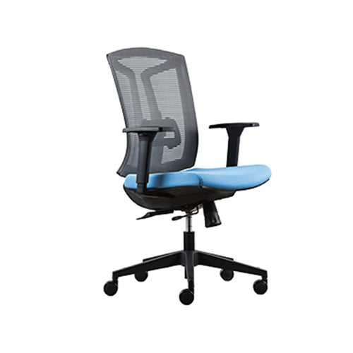 Blue Mesh Ergonomic Task Chair