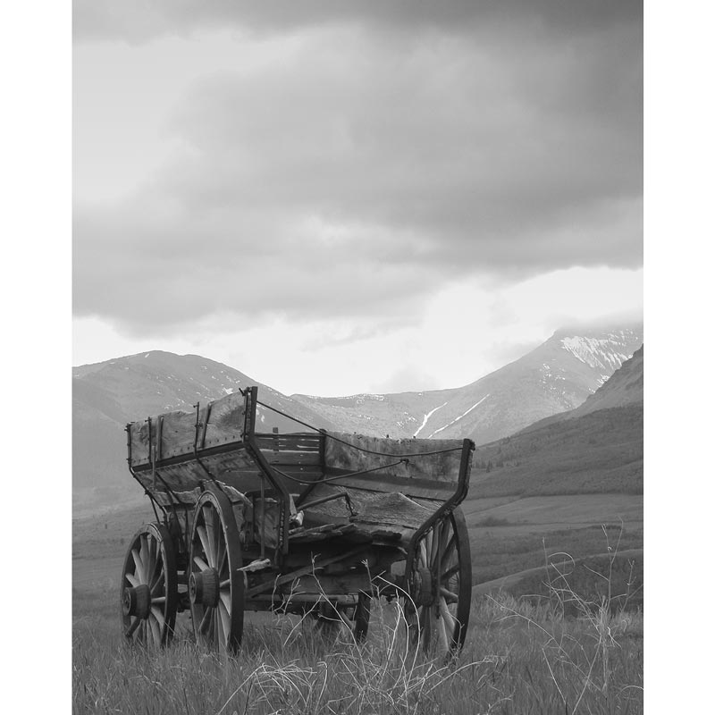 Old Wagon Photography