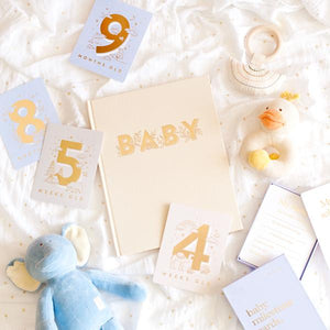 Baby Milestone Cards | Powder Blue