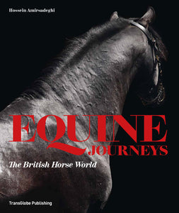 Equine Journeys book cover of black horse