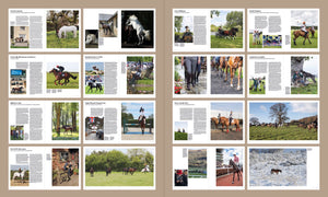 Equine Journeys: The British Horse World