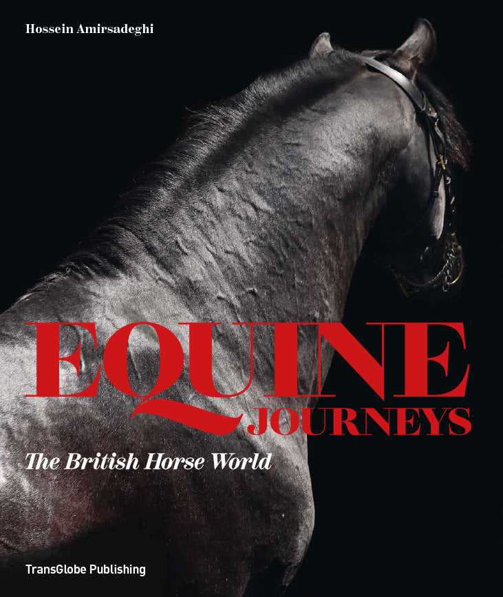 Equine Journeys book cover image of black horse