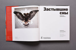 Frozen Dreams: Contemporary Art from Russia (Russian edition)