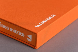 Arte Contemporáneo México (Slipcase edition)