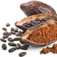 Cocoa_cacao_beans_powder_pod_pic