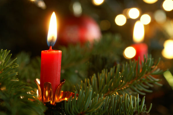 christmas_tree_candles_flame_fire_red_green_bright_pic