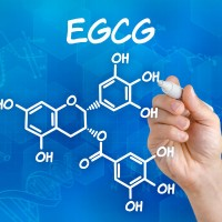egcg_blue_diagram_pic