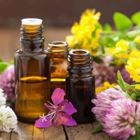 essential_oils_flowers_healthy_pretty_colorful_white_yellow_pink_sml_pic