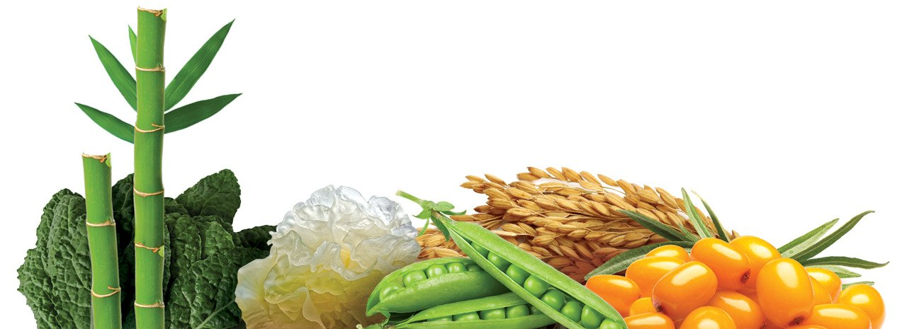 ingredients-image-banner_bc6f8ffa-6e03-4410-9d86-958d4edca41d.jpg