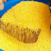 corn_seeds_pic