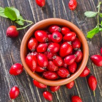 rose hips_bowl_pic