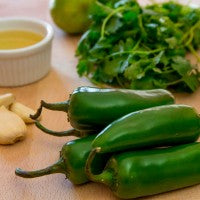 salsa_recipe_ingredients_olive_oil_jalapeno_garlic_cilantro_lime_pic