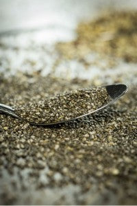 top_5_reasons_to_add_chia_to_your_diet_image