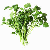 watercress_a_boquet_of_protection_image