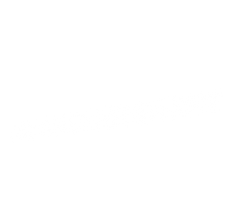 wakethedistrict offers the some of the best designer summer t shirts