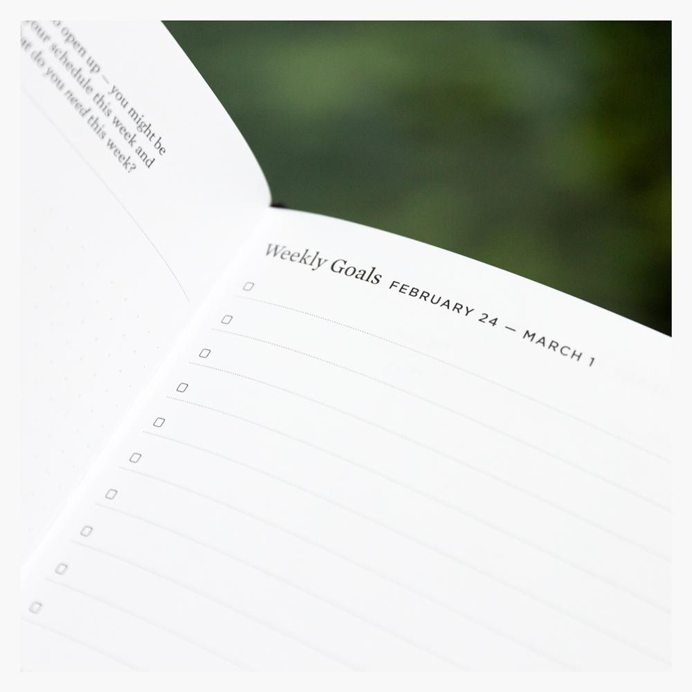 Ink+Volt 2020 Planner Brilliant Series