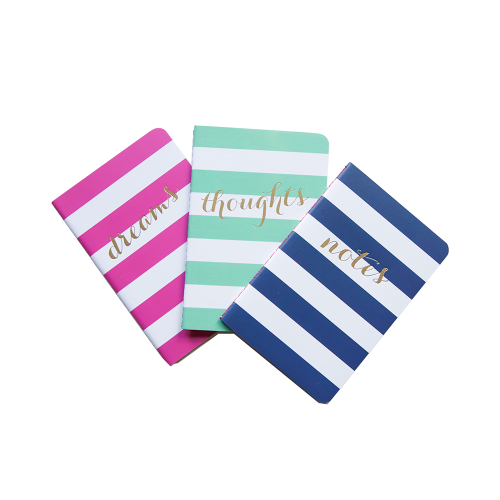 Wide Stripe Pocket Jotters pink mint and navy