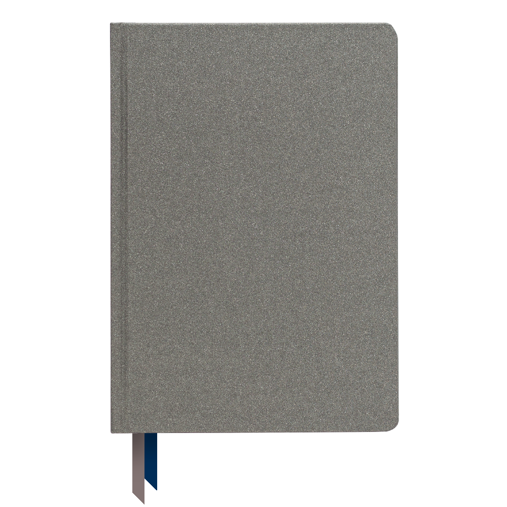 Ink+Volt 2021 Goal Planner Limited Edition Series stardust silver