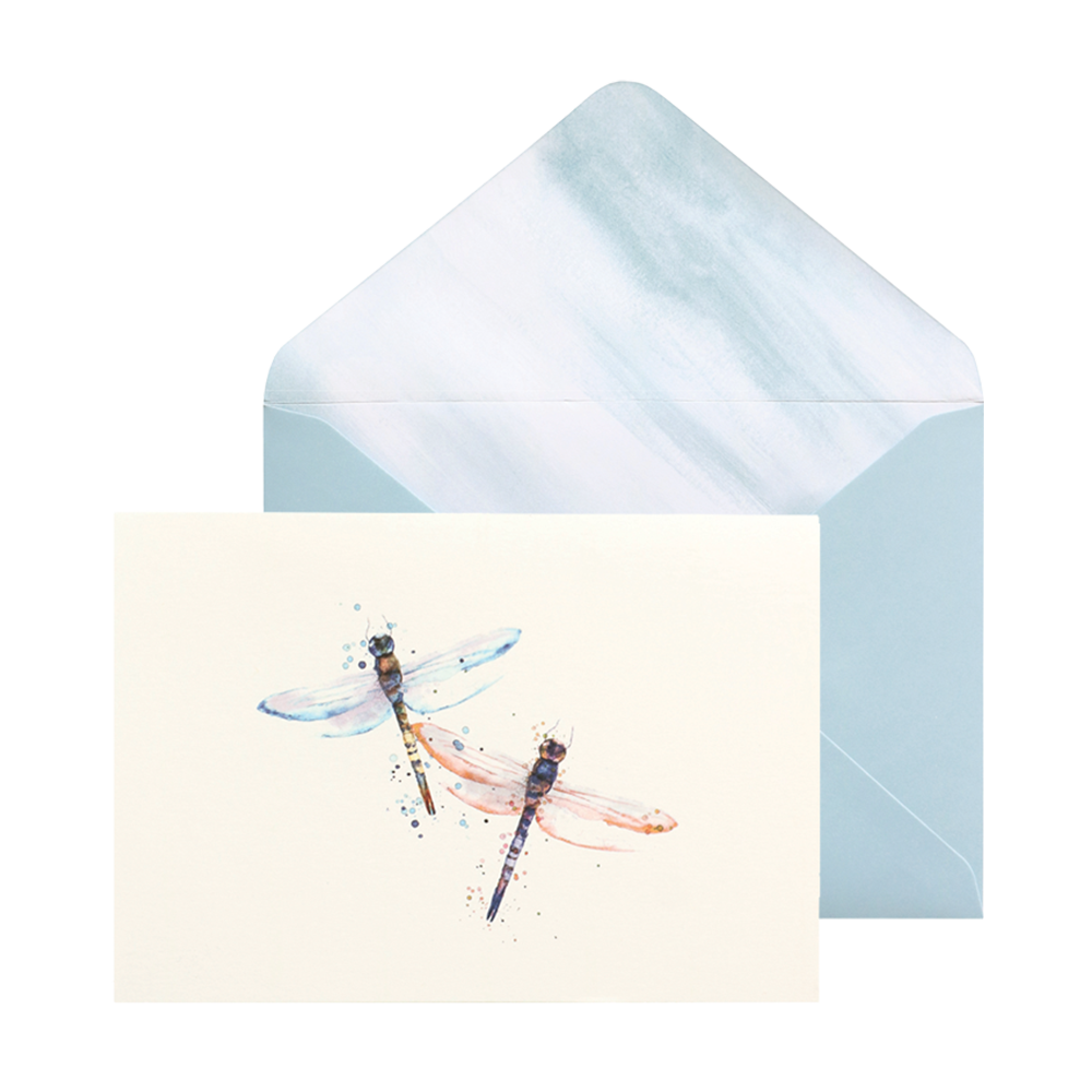 Portico dragonflies card set